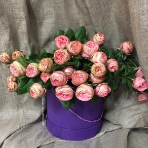роза голландия туркиш делайт кустовая 40 см - 230 рублей