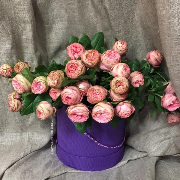 Роза пионовидная туркиш делайт кустовая 40 см, кустовая роза, роза,