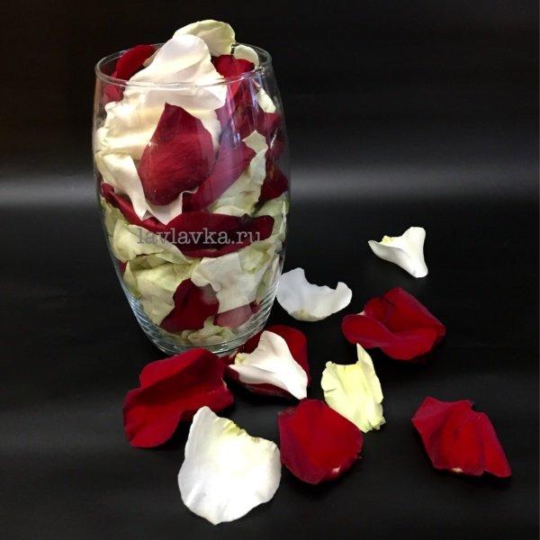 Лепестки роз, белые лепестки роз, красные лепестки роз, лепестки, лепестки роз, лепестки цветов, розы,
