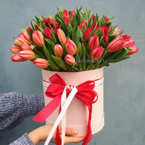 Букет в шляпной коробке №19, 101 тюльпан, 101 тюльпан в коробке, букет из тюльпанов, красные тюльпаны, тюльпан, тюльпаны,