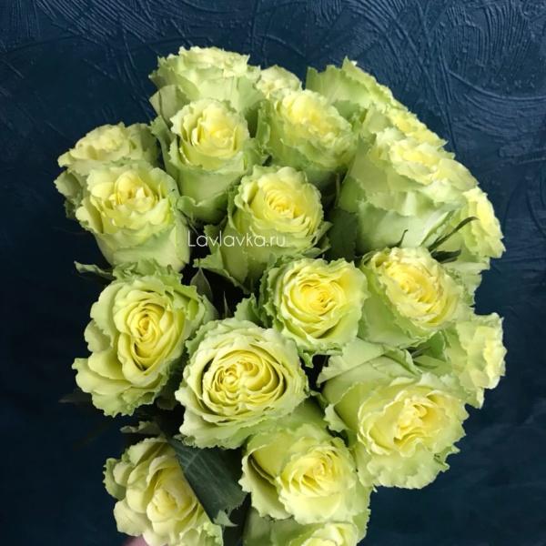 Роза импорт лимбо 40 см, букет из роз, зеленая роза, лаймовая роза, лимонная роза, роза лимбо, розы, цветы на 14 февраля, цветы на 8 марта, чайная роза,
