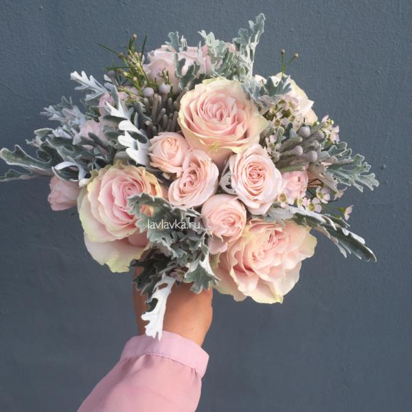 Букет невесты №34, бруния, бруния сильвер, пудровые розы, пудровый букет, пудровый букет невесты, роза кустовая, роза кустовая пионовидная, роза пинк мондиаль, роза пионовидная, розовая роза, сенецио, сенецио маритима, цинерария,